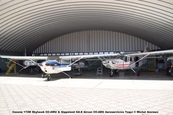 DSC_0035 Cessna 172M Skyhawk CC-AMU & Gippsland GA-8 Airvan CC-AEG Aeroservicios Toqui © Michel Anciaux